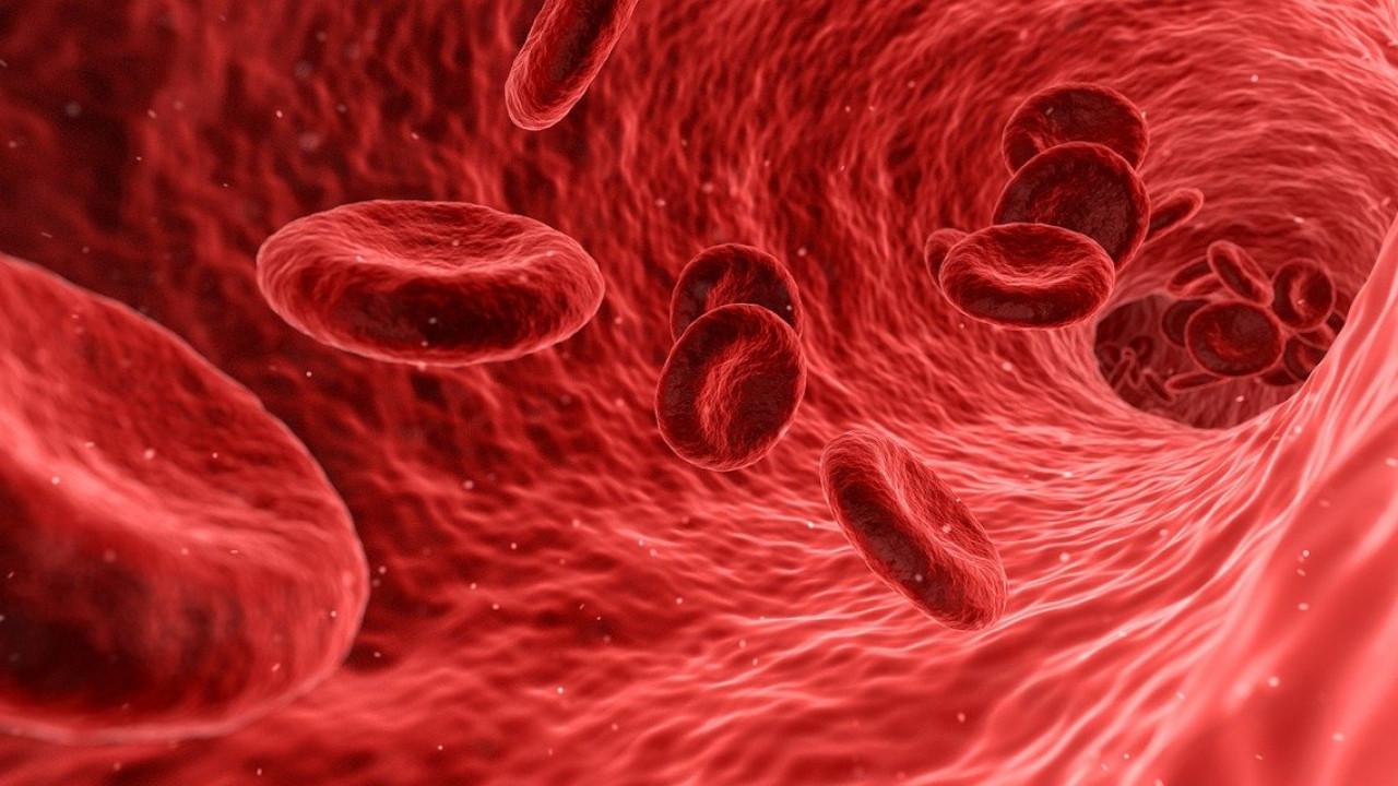 имунолошки одговор може да предизвика згрутчување на крвта