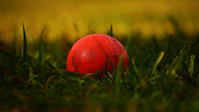 Се срушија двајца вакцинирани крикет играчи на теренот
